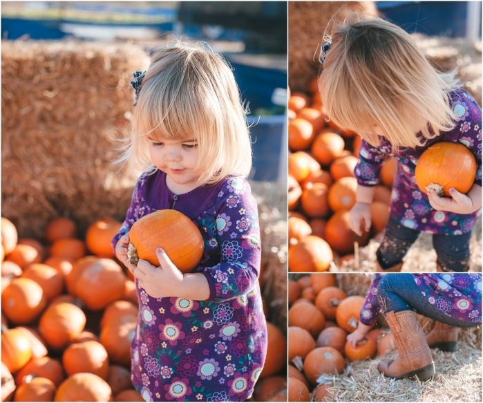 Reams Photo | The Pumpkin Patch | 2013_0003.jpg